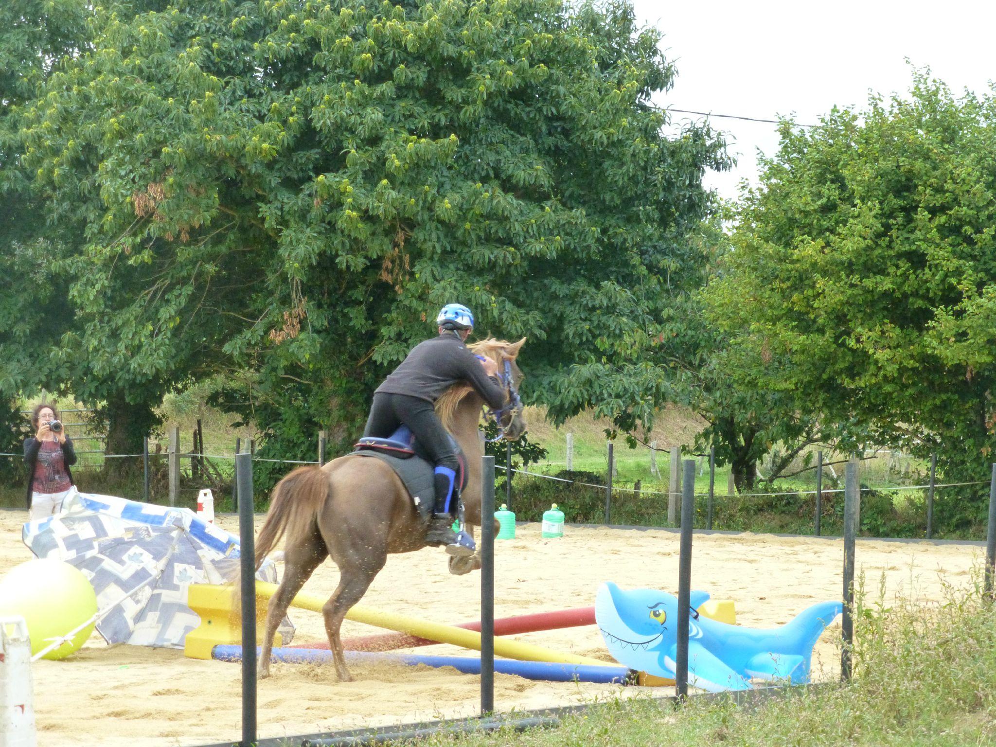 Jeux équestres manchots - parcours de pleine nature après-midi (314)