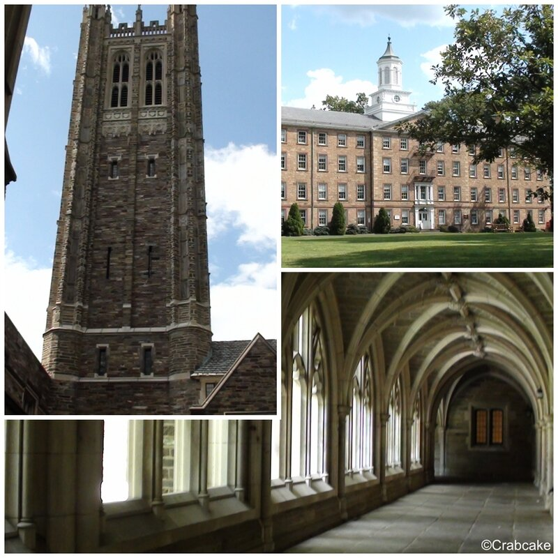 Princeton campus1