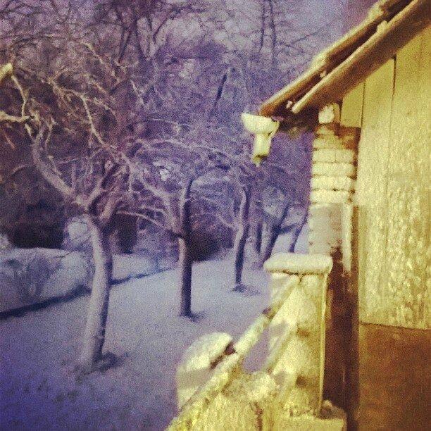 InstagramCapture_020c1beb-dd3a-40b5-8a45-277eab9da898 (1)