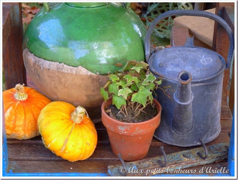 Fête des plantes à Courson (11)