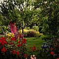 Windows-Live-Writer/jardin_D005/DSCF3886