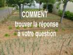 question-réponse