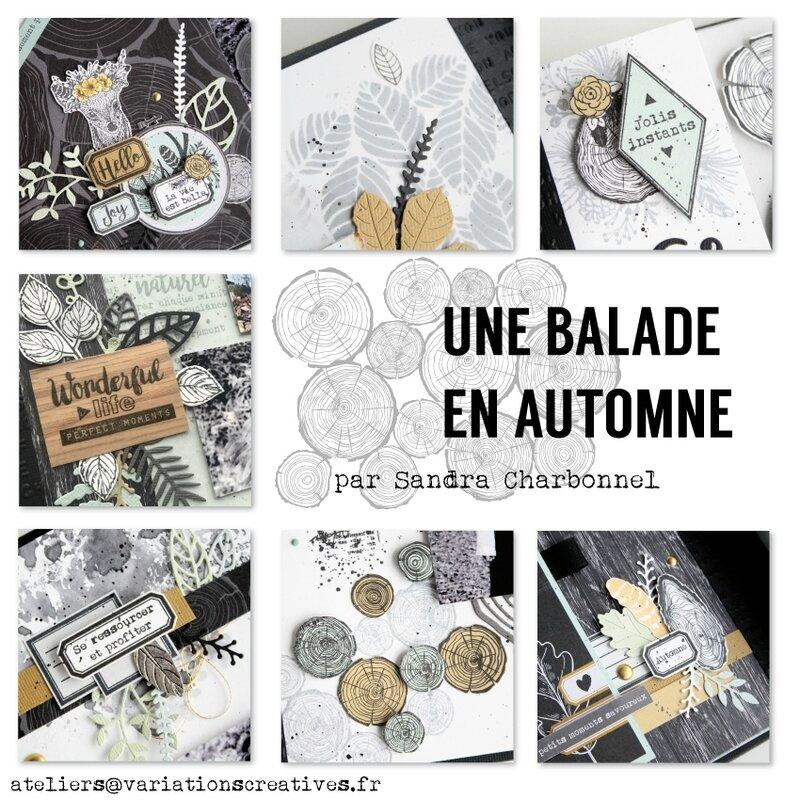 Aperçu_Sandra_Balade_en_automne