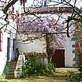 1-Ainhoa, Sare, Zugarramurdi 300317