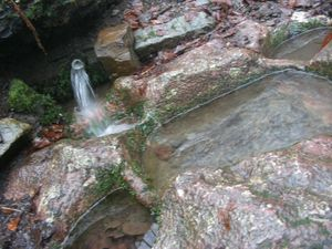 la source de saint thibaut 021 - Copie