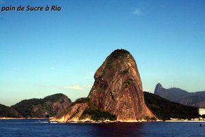 19____BAIE_DE_RIO__PAIN_DE_SUCRE