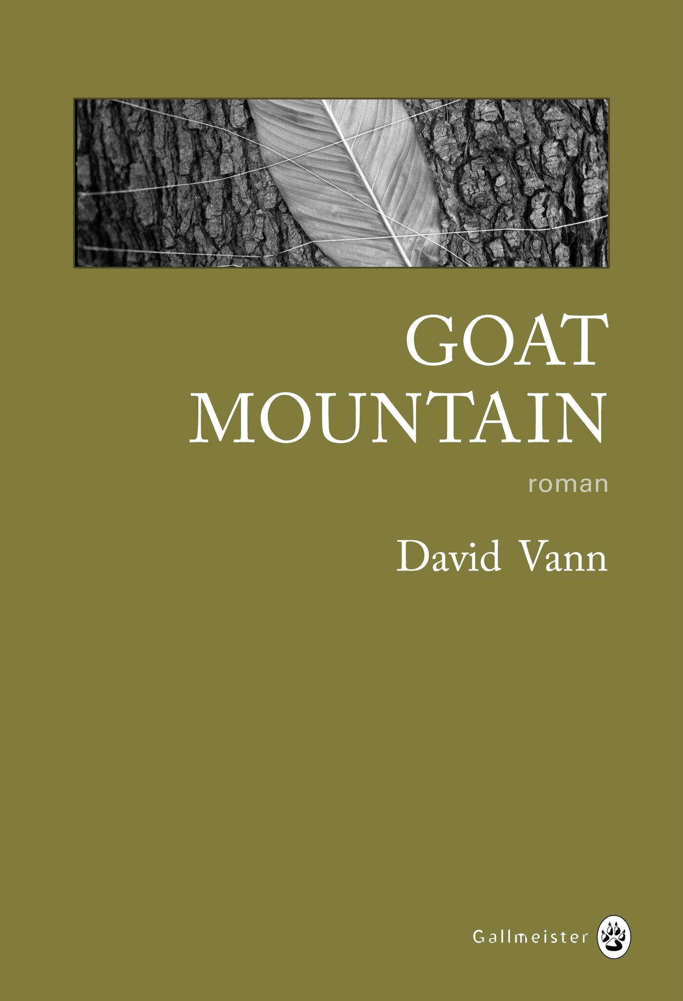 David Vann - Goat Mountain