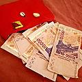 Porte feuille magique,portefeuille magique inconvénients,les dangers du portefeuille magique,portefeuille magique explication