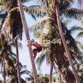 33_cueillette de coco sur motu Taurere