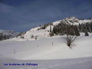 Chaucisse-19