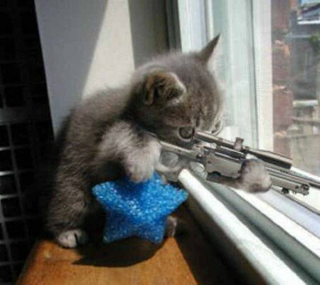chat_20sniper_20web