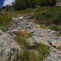 2009 08 27 Le chemin pour grimper au sommet du Gerbier de Jonc