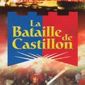 Spectacle 2oo8 de la bataille