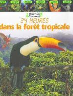 24 heures dans la forêt tropicale