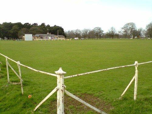 A cricket ground