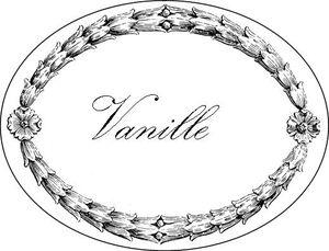 Vanille 2