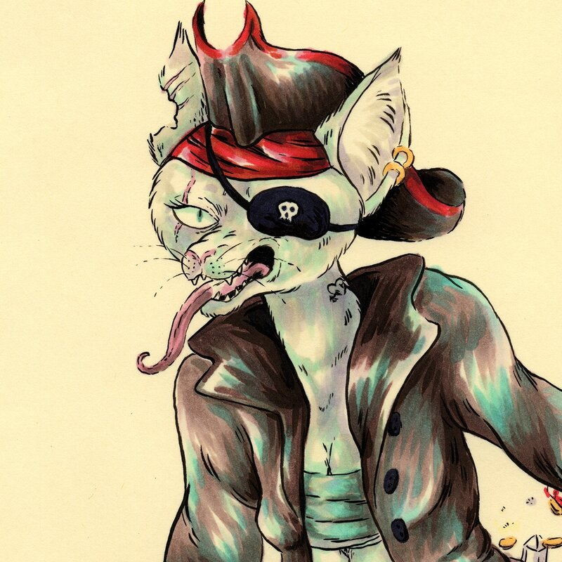 pirate-cat_smallerzoooom