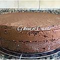 Génoise au chocolat moelleuse et super facile