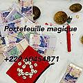Comment avoir un portefeuille magique chez le maître olou