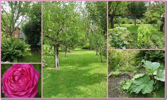 jardin 12 septembre 20217