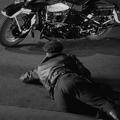 Chasse au gang (crime wave) (1954) d'andré de toth