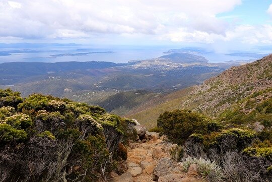 Mt Wellington01