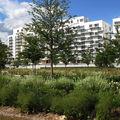 IMG_4874 Boulogne_Billancourt