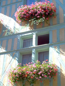 Troyes_cot__rue
