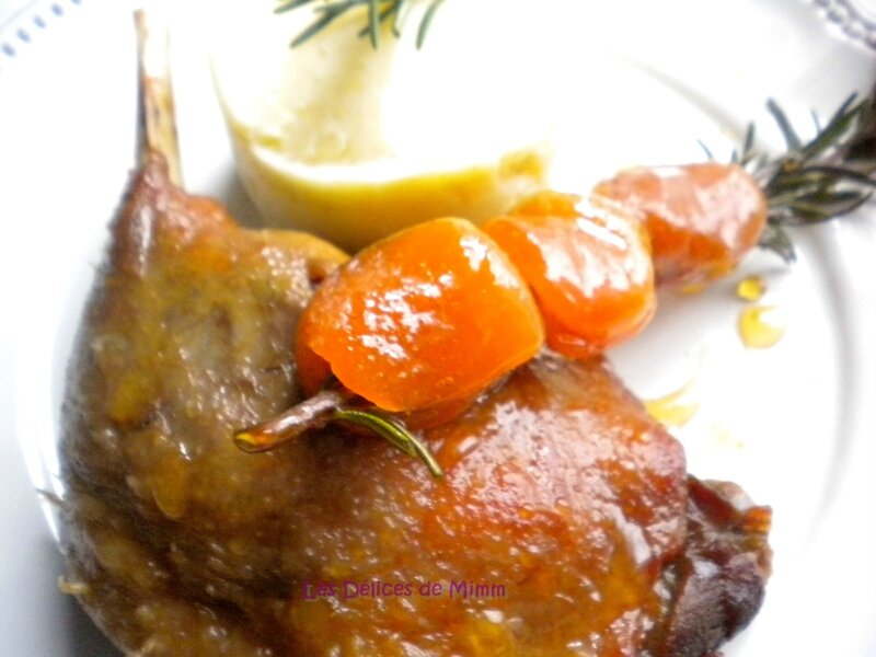 Canard confit aux abricots moelleux 5