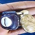 Le talisman de l'amour du grand et puissant maitre du monde et d'afrique marabout agbahe