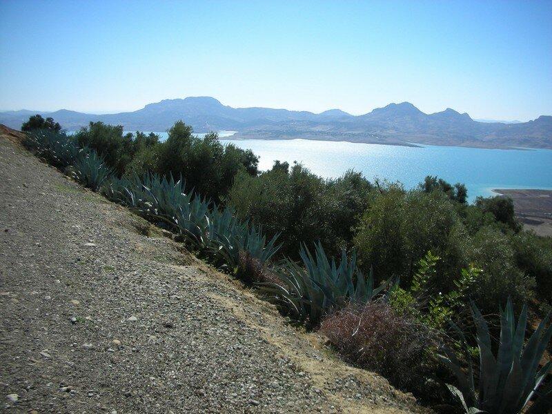 Lac ATlas pres Ifran