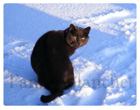 hiver2web