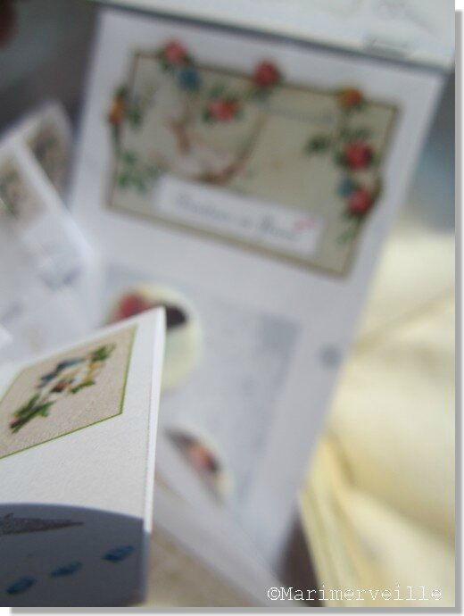 Collections de cartes boutons ©Marimerveille