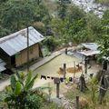 Village au milieu de nulle part