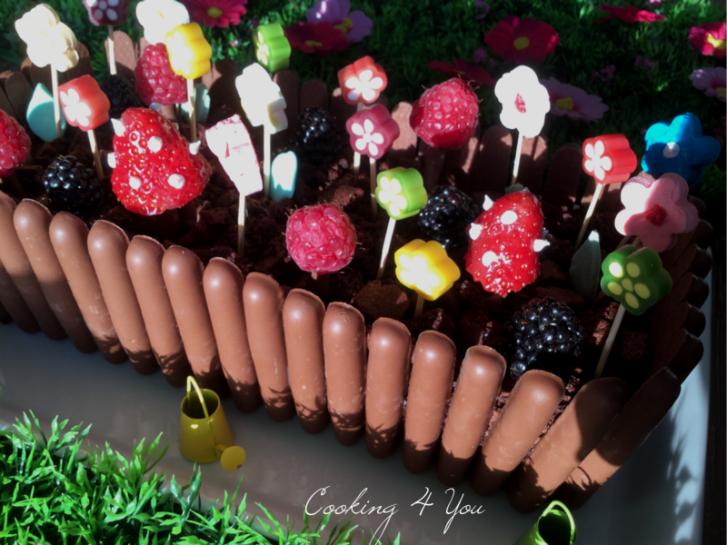 jardinière au chocolat 017