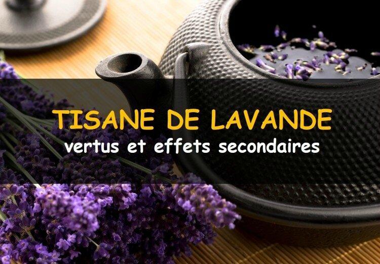 tisane-de-lavande-4dd56b9787