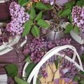 table lilas 041