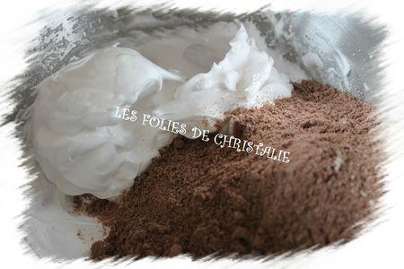 Macarons du chocolatier 4