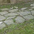 balade à cheval médiévale - Abbaye de Hambye (202)