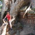 Siem-reap, premieres visites des ruines