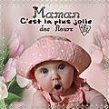 Miss rose bonbon pour fée capucine