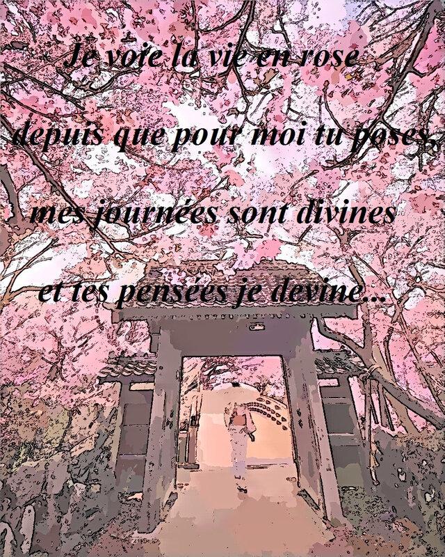 la_vie_en_rose