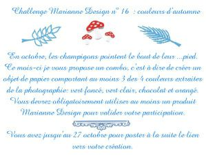 annonce-challenge-16