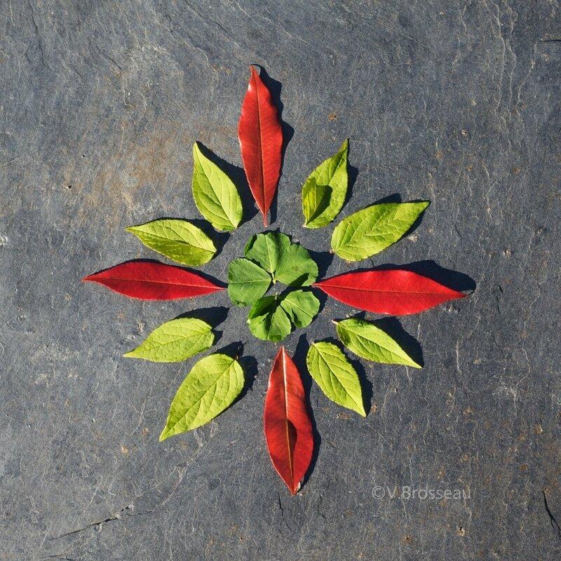 mandala-fleur-feuille17-01