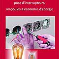 Travaux electriques divers, ampoules eco-energie