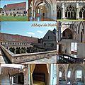 Abbaye_de_Noirlac_mosa_que_1