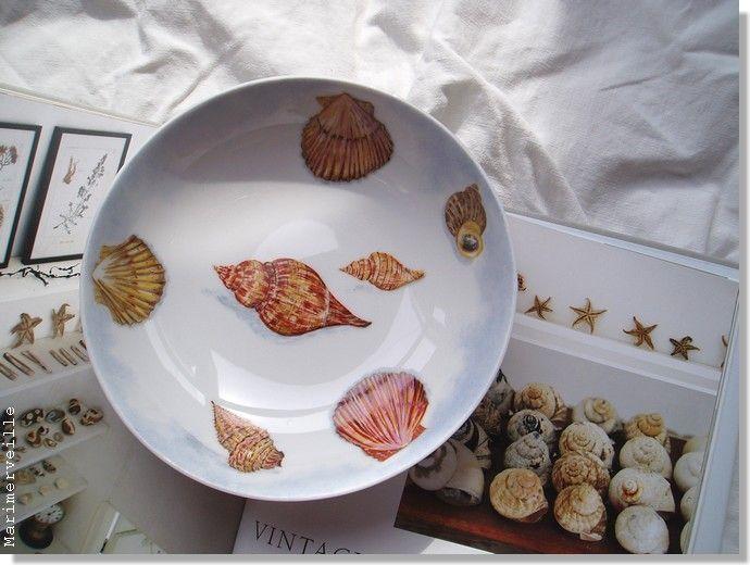 Assiette aux coquillages 4