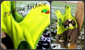 tortue_collage
