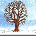 Windows-Live-Writer/Projet-Mon-ami-larbre_90D5/image_thumb_14