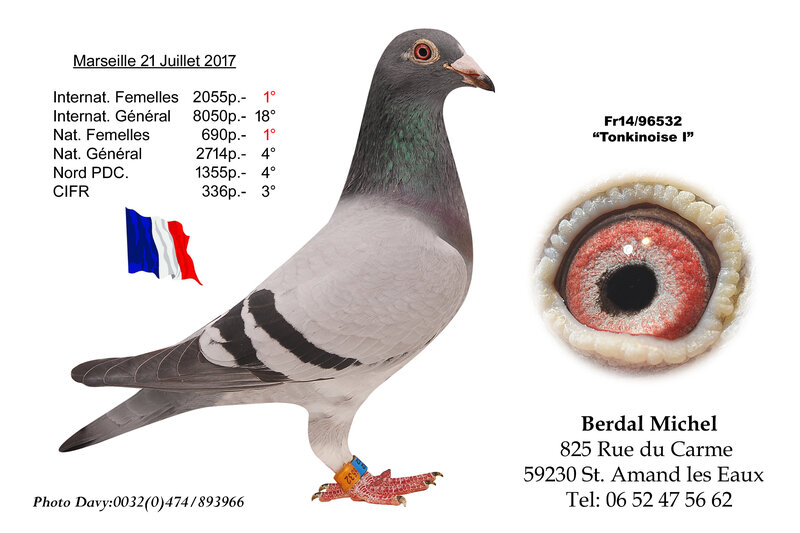 Berdal Michel Tokinoise I